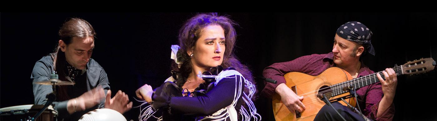 Flamenco-Show 1400x390