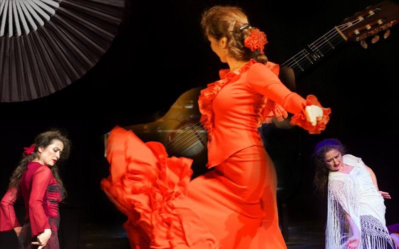 Flamenco-Shows 800 02